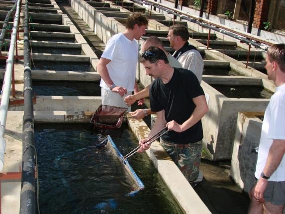 Überall gibt es etwas zu sehen, Fischverrückte aus Deutschland und Dänemark.