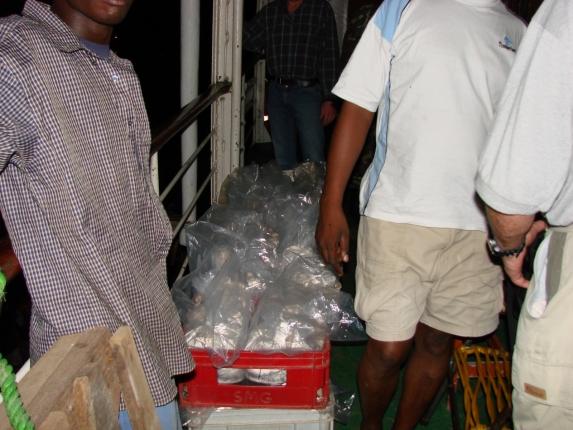 Fische für die Firma Stuart M. Grant Ltd. am Kambiri Point.