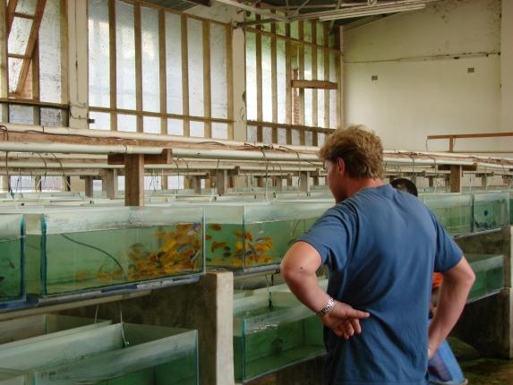 Da staunt der Fachmann, im Innenbereich der Fangstation.